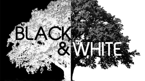 Black & White, an art show