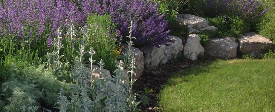 Landscaping Services at Wyoming Plant Company