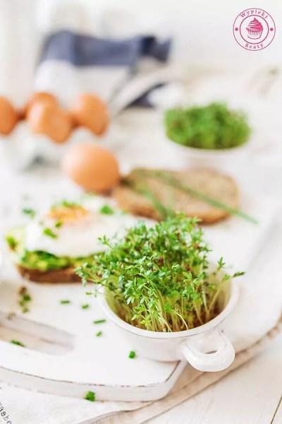 tost z awokado i jajkiem