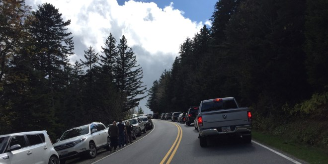 GSMNP records another all-time high for visitors