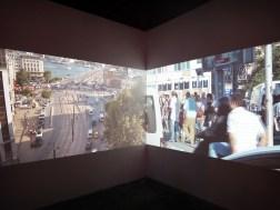 wystawowe zwierze 13. Istanbul Biennale, Turkey (35)