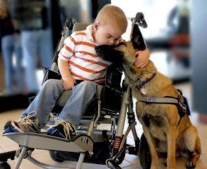 Enfant fauteuil chien