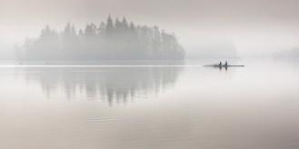 Scull boat in fog