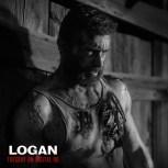 Logan-DHD