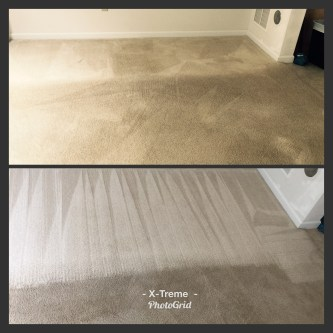 Providing carpet cleaning service to the Belleville, IL area