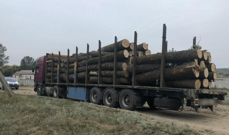 Масштабне викрадення деревини під Харковом оперативно припинено
