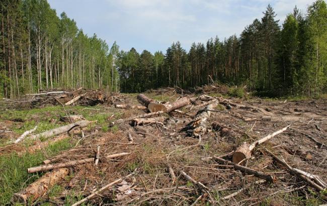 У Харкові обговорювали методи реагування на екологічні порушення