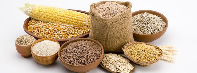 Врожай гречки, кукурудзи, гречки і цукрового буряку менший ніж минулоріч