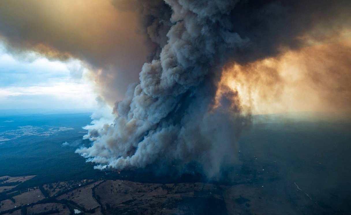 Екологи занепокоєні наслідками пожеж в Австралії