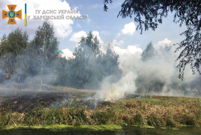 Протягом тижня рятувальники загасили 152 пожежі, 93 з них – в екосистемах