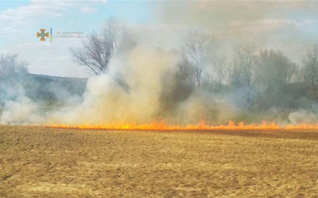 Протягом тижня рятувальники загасили 165 пожеж