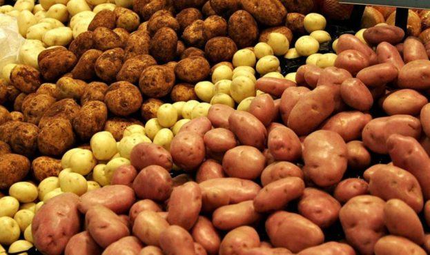 В Україні знову подорожчала картопля