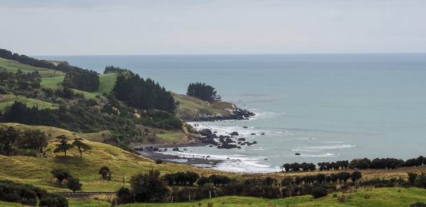 The Pacific coast north of Dunedin