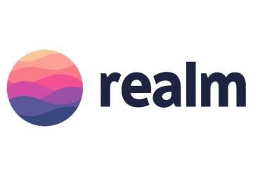 Логотип Realm
