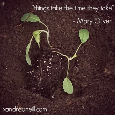 things take the time they take