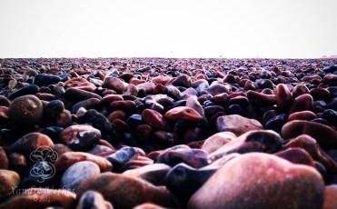 Brighton - Pebble Beach