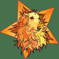 Starfyre-logo-webtransbg-LG