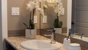 Стіни у ванній кімнаті: сучасні матеріали для оздоблення