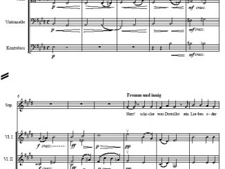 Partiturseite: xpt 008. HUGO WOLF 9 LIEDER Sopran und Orchester