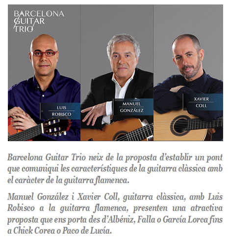 Bcn guitar trio cat
