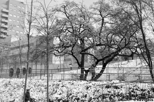 a walk by the snow#1_©xavigeis