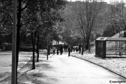 a walk by the snow#3_©xavigeis