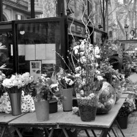 Flowers in Las Ramblas