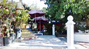 thaita-backyardjuly2014 (19)