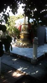 thaita-backyardjuly2014 (8)