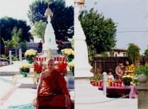 tuyethong-stupabackyard (14)
