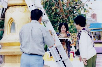 tuyethong-stupabackyard (21)