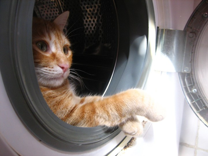 poes in wasmachine