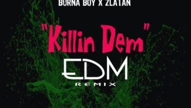 "Burna Boy & Zlatan ""Killin Dem"" EDM remix by DJ Smith"