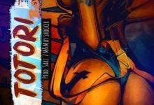 Danny S Totori Body Mp3 Download