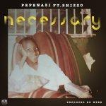 Necessary by Pepenazi & Shizzo