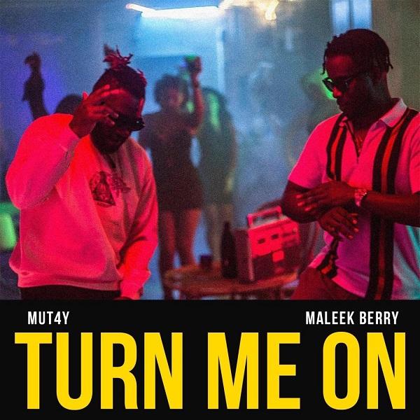 Turn Me On by Mut4y & Maleek Berry