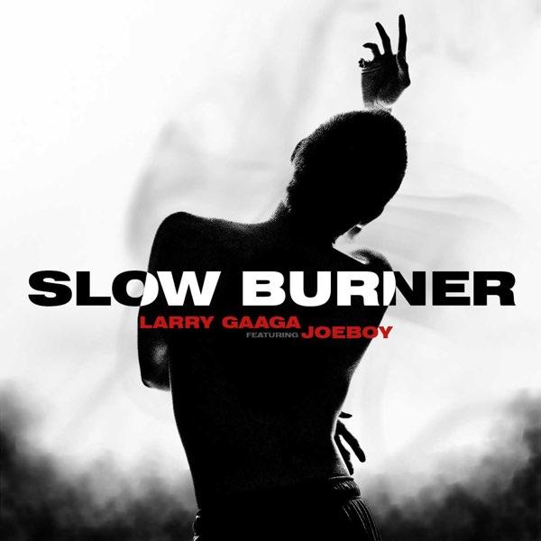 Larry Gaaga Slow Burner ft Joeboy
