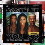 Stefflon Don Ft Rema Tiwa Savage Cant Let You Go Remix