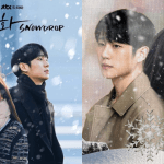 Cover - 'Snowdrop' has been heavily criticized