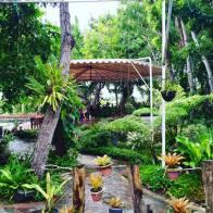 Strolling at Espacio Verde Garden Villas