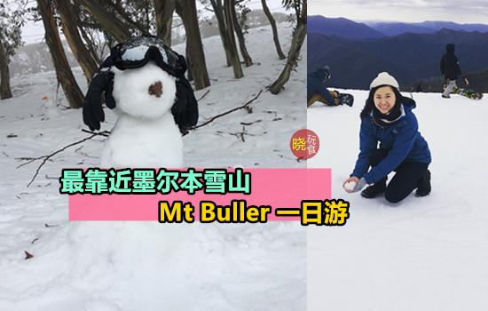 【雪山一日游】赏雪 + 堆雪人 ,最靠近墨尔本の雪山 - Mount Buller