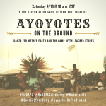 CALL TO ACTION Sat 9/10: Ayoyotes on the Ground/Ayoyotes Por La Causa