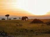 Sunrise at Masai Mara, Kenya