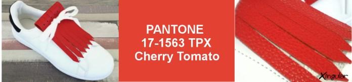 Colores para la Primavera 2-Cherry-Tomato-SS-2018