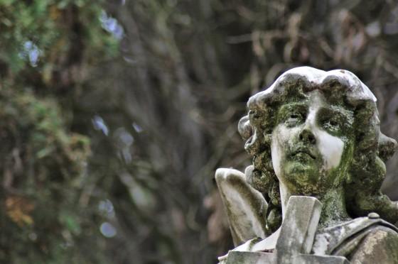 Fotografía de cementerios