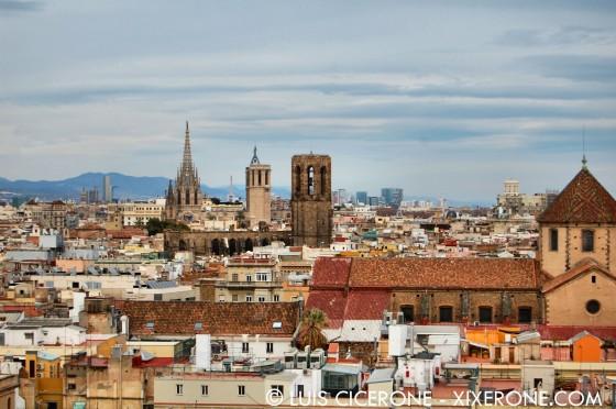 Vistas dirección este: Ciutat Vella, Santa Maria del Pi y Catedral
