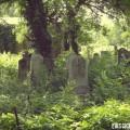 cementerio-judío-bucarest-tumbas