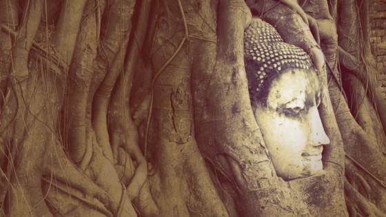 Cabeza de Buda de Ayutthaya