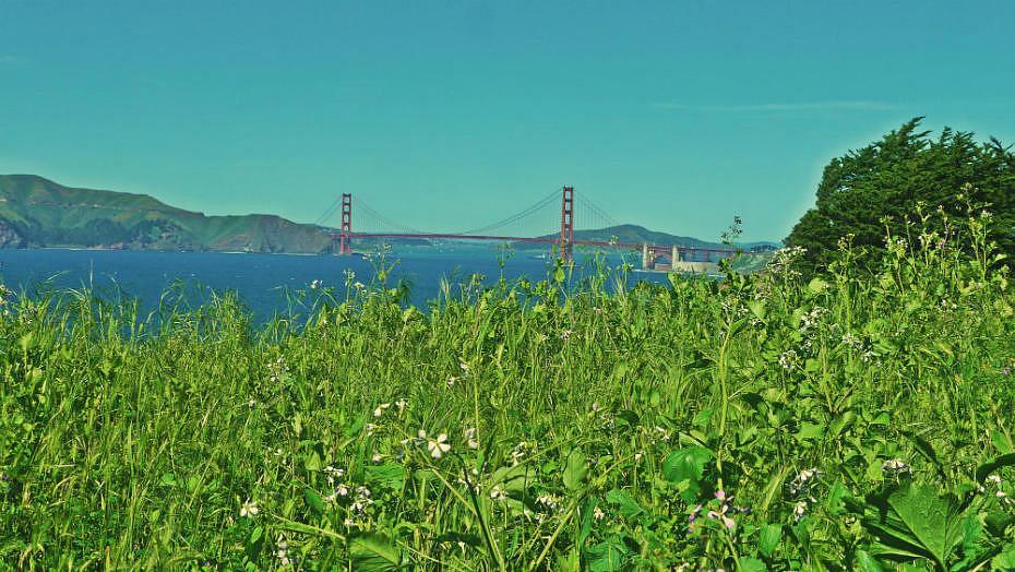 Lands End - Actividades en San Francisco