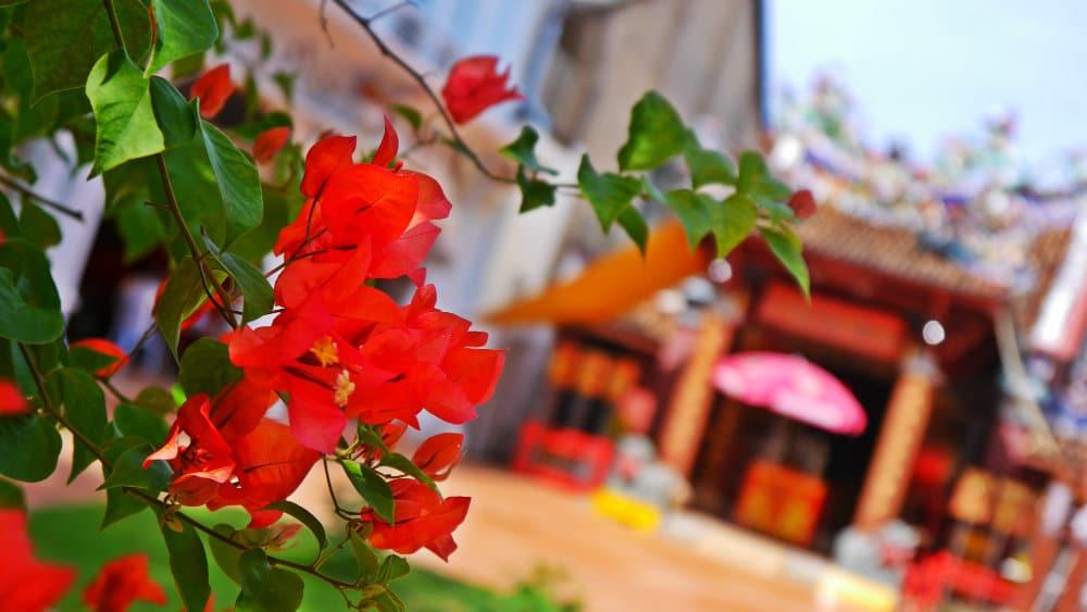 Phuket Town - Templo chino